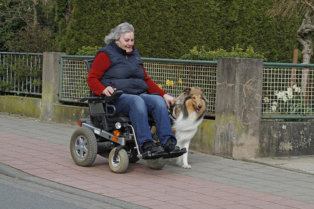 miramigo-hundeakademie-lpf-assistenzhund-rollstuhl