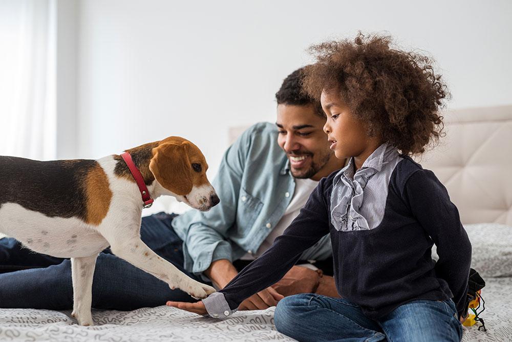 miramigo-hundeakademie-servicehund-kind