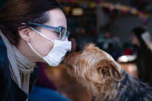 Hundetraining trotz Corona mit Schutzmaßnahmen.